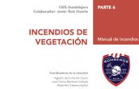 M1-Incendios-v6-06-vegetacion