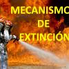 MECANISMOS DE EXTINCIÓNpng